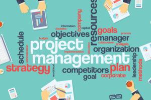Dynamic Project Management