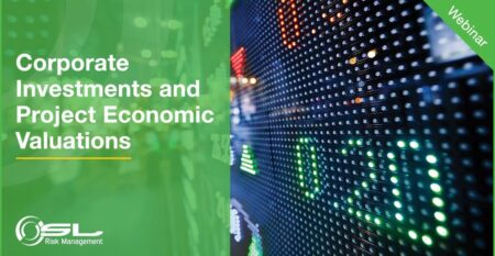 Corporate Investments and Project Economic Valuations